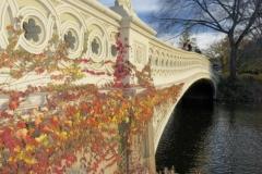 Bow Bridge-Quite Possibly Central Park's Most Photographed Bridge