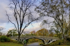 Central Park's Exceptionally Beautiful Gothic Bridge