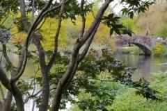 Looking NE At Central Park's Gapstow Bridge