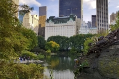 Looking South Across Central Park's Pond To The Famous Plaza Hotel