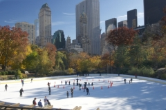 One Of 2 Central Park Ice Skating Rinks