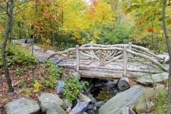 One Of Central Park's Rustic Bridges In The North Woods Region