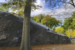 Rat Rock-Central Park's Favorite Place For Honing Rock Climbing Skills