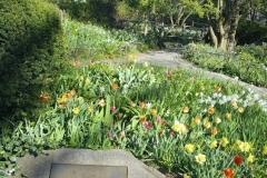 Shakespearean Gardens-Central Park