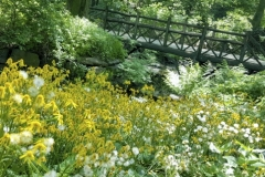 Wooden Bridge In Spring-Central Park