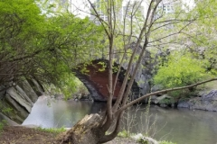 Side View Of Gapstow Bridge