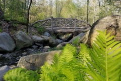 One Of Several Rustic Bridges In The Park