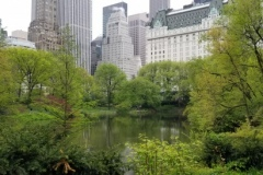 Looking SE Over The Central Park Pond
