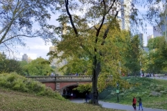 Another Beautiful Central Park Bridge