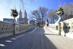 One Of Central Park's 5 Cast Iron Bridges