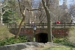 Another Of Central Park's Beautiful And Unique Arches