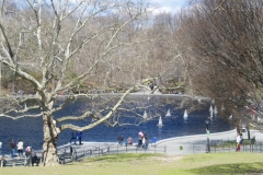 Conservancy Water-Central Park's Eastern Side