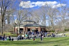 The Carousel-Central Park