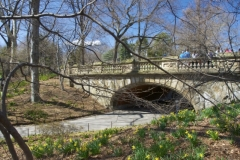 Glade Arch, In Central Park, Is One Of 36 Central Park Bridges Designed By Calvert Vaux copy