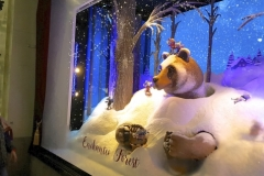 Holiday Window Displays Delight The Senses