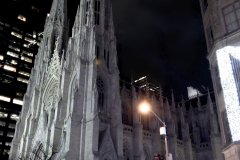 The Very Beatiful St. Patrick's Cathedral