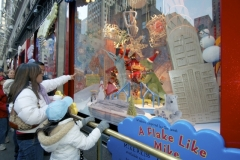 Children Absolutely LOVE The Many Beautiful Holiday Window Displays