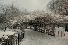 Central Park Passageway Coated With Fresh Fallen Snow
