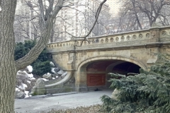Central Park Winter's Are Still And Beautiful