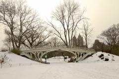 Central Park's Gothic Bridge On A Snowy Winter Day