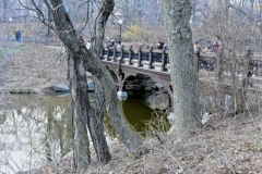 Central Park's Oak Bridge Spanning Bank Rock Bay