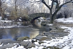 Gapstow Bridge In A Snowny Central Park