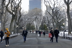 The Mall-Central Park Winter
