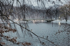 Wintery Scene Of Central Park's Beautifu Bow Bridge