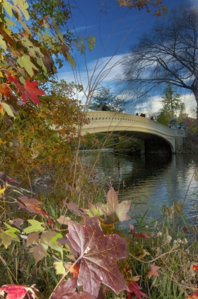 Central Park's Gorgeous Bow Bridge In Early Autumn