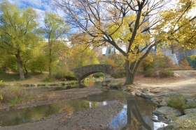 The Stunning Gapstow Bridge On A Quiet Autumn Day In Central Park